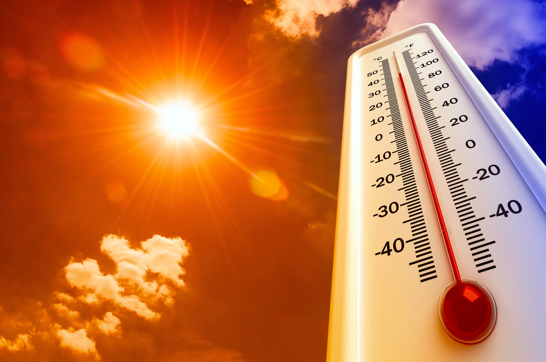 temperatuur kweekruimte buiten