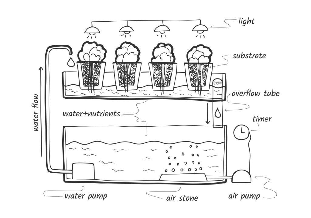Eb en vloed systeem